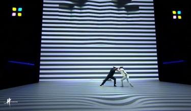 visual performances by COMPAGNIE HYBRIDE